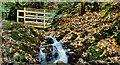 J3670 : Footbridge and waterfall, Cregagh Glen, Belfast by Albert Bridge