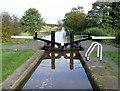 SJ6049 : Baddiley Bottom Lock near Ravensmoor, Cheshire by Roger  Kidd