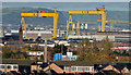 J3575 : Samson and Goliath, Belfast (4) by Albert Bridge