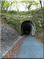 SX4971 : Grenofen tunnel by David Smith