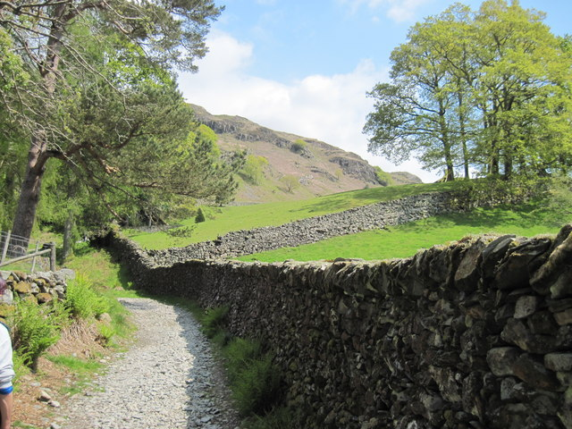 Footpath  to  Loughrigg  Fell