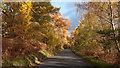NN6258 : B846 on north side of Loch Rannoch by Trevor Littlewood