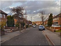 SJ8487 : Gatley, Borrowdale Avenue by David Dixon