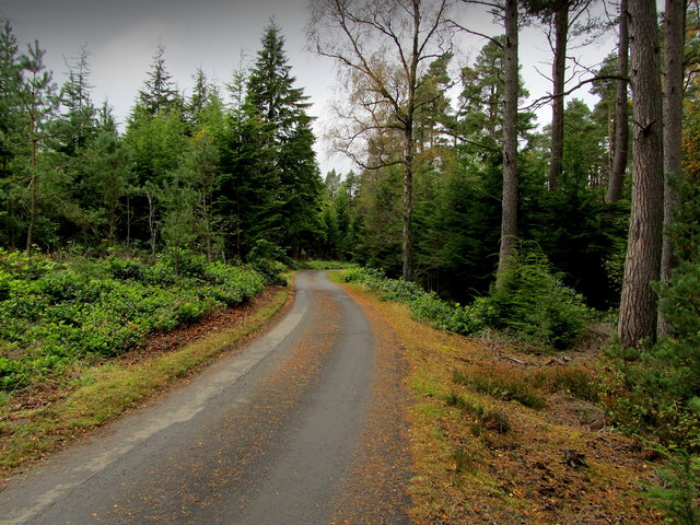 Estate Drive, Cragside