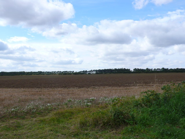 Farmland near Shernborne