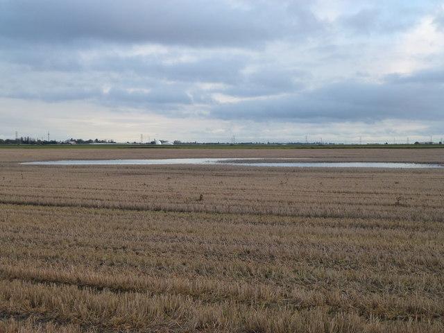 Flooded stubble field on White Moor near March