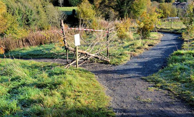 Two paths, Minnowburn, Belfast