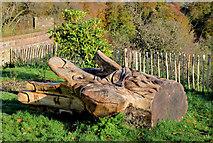 J3268 : Carving, Terrace Hill, Belfast (4) by Albert Bridge