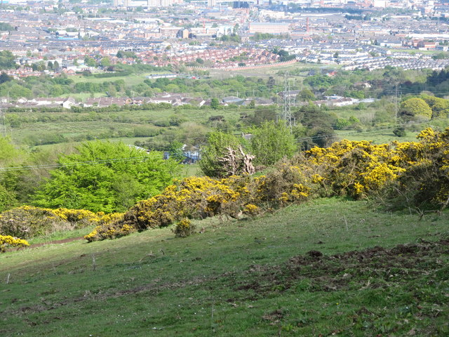 View down slope towards the two sets of powerlines on the urban fringe of Belfast