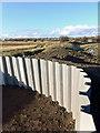 SE4602 : A new hide at RSPB Adwick? by Steve  Fareham