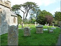 SY7190 : St Michael, Stinsford: churchyard (e) by Basher Eyre