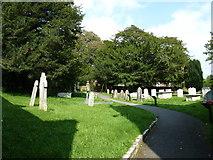 SY7190 : St Michael, Stinsford: churchyard (f) by Basher Eyre