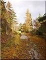 NH4641 : Old road, by Tòrr nan Caorach by Craig Wallace