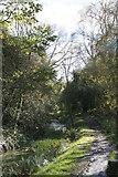 SJ6903 : Blists Hill - canal by Chris Allen
