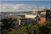 SX9163 : Torquay: harbour and wheel from The Terrace by Derek Harper