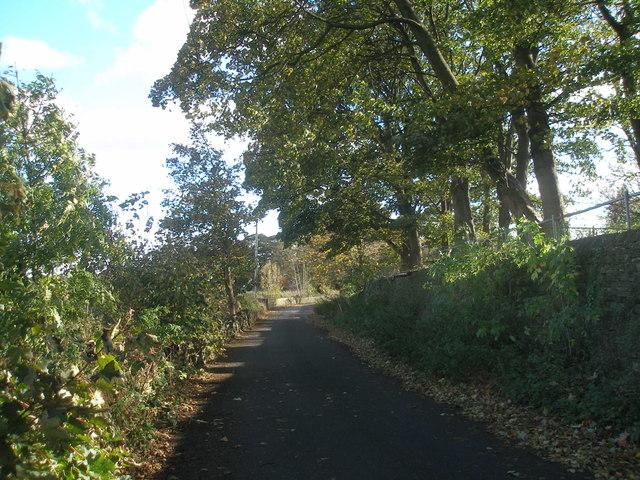 Shepherds Thorn Lane, Toothill