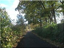 SE1421 : Shepherds Thorn Lane, Toothill by John Slater