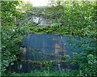 NS3979 : Rock face in the former Bonhill Quarry by Lairich Rig