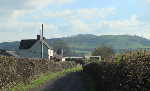 2012 : Limekiln Farm with Creech Hill behind