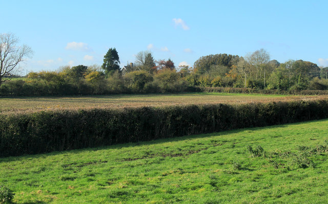 2012 : Over field and hedgerow to a small cemetery