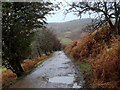 SK1389 : Alport Dale farm track by Andrew Hill