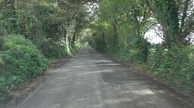 Carclew Road within Mylor Clump