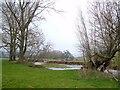 SX9499 : River Culm at Rewe by Derek Harper