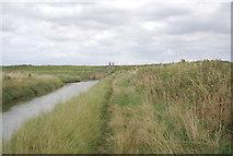 TQ9293 : Roach Valley Way, Paglesham Creek by N Chadwick