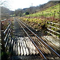 SH5847 : Welsh Highland Railway heads south away from Beddgelert by Jaggery