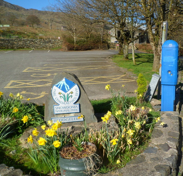 Daffodils at the entrance to a Beddgelert car park