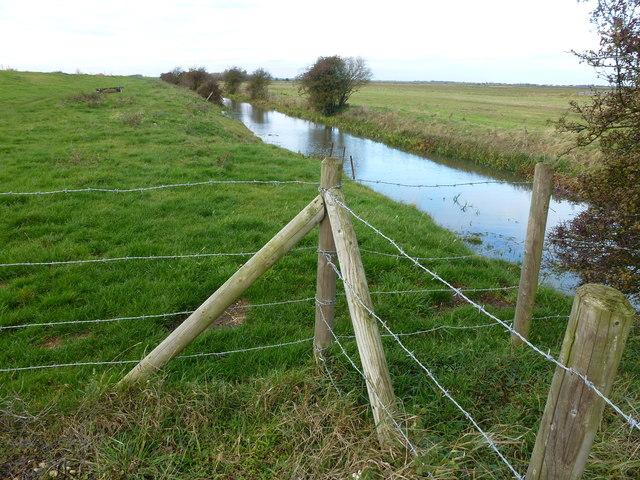Morton's Leam at Eldernell - The Nene Washes