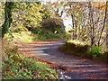 NR7993 : The road to Crinan by sylvia duckworth