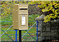 J4041 : Gold letter box, Seaforde by Albert Bridge
