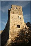 SK7953 : Newark Castle by Richard Croft