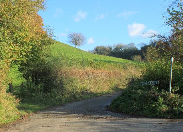 2012 : Saite Lane from the bottom