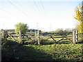TG2004 : Gate on footpath leading along the A47 (Norwich Southern bypass) by Evelyn Simak
