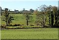 J2661 : Fields and trees, Lisburn/Ravernet by Albert Bridge