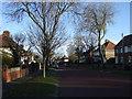NZ4054 : Queen Alexandra Road, Grangetown by JThomas