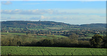 ST7037 : 2012 : South of east from the A359 by Maurice Pullin