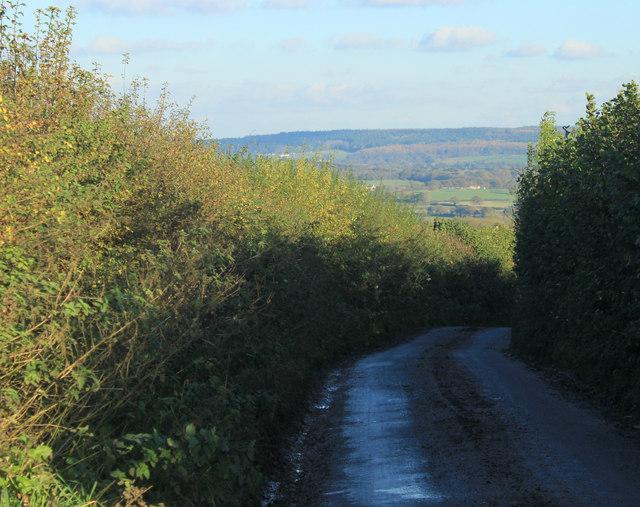 2012 : West down Copplesbury Lane