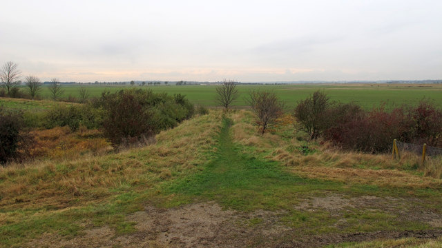 Footpath to Paglesham Eastend