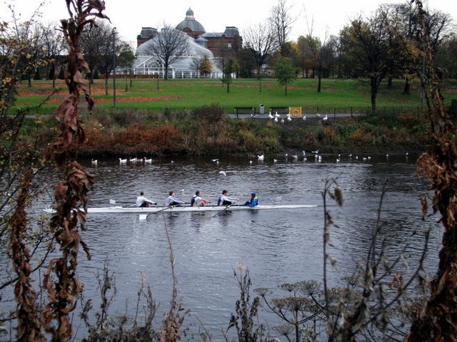 Rowing race on the Clyde