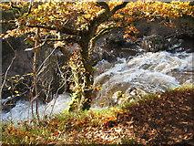 NN6408 : Keltie Water by Carol Walker