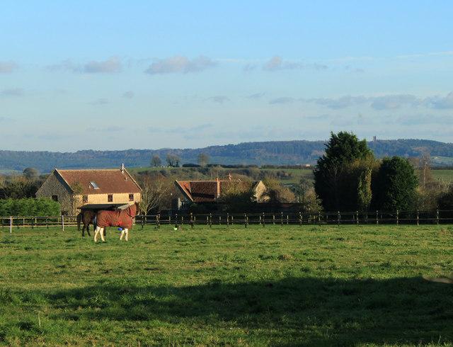 2012 : Pasture near Higher Green's Combe Farm