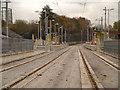 SJ8598 : Metrolink, Holt Town by David Dixon