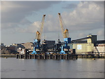 TQ4279 : Tate & Lyle cranes by Gareth James