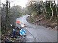 NZ1747 : Landslip on Peth Lane by Oliver Dixon
