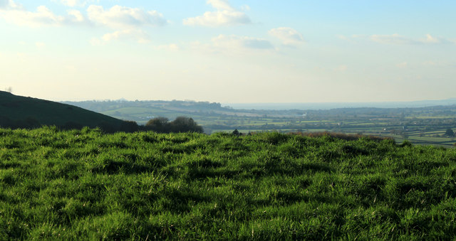 2012 : West from the lane to Spargrove