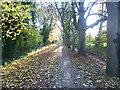TQ2169 : Path across Malden Golf Course by Marathon