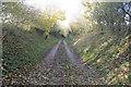 TF2784 : Track towards North Farm by J.Hannan-Briggs